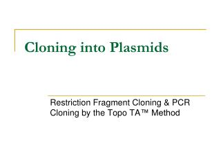 Cloning into Plasmids