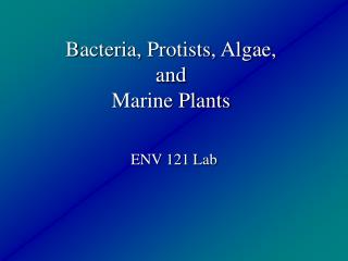 Bacteria, Protists, Algae, and  Marine Plants