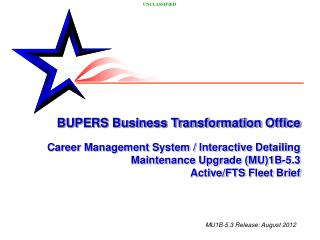 BUPERS Business Transformation Office Career Management System / Interactive Detailing
