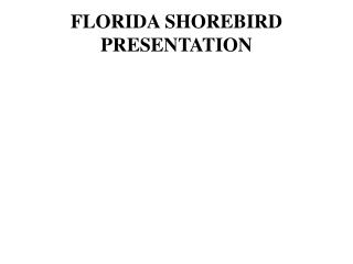 FLORIDA SHOREBIRD PRESENTATION