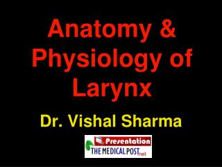 Anatomy & Physiology of Larynx