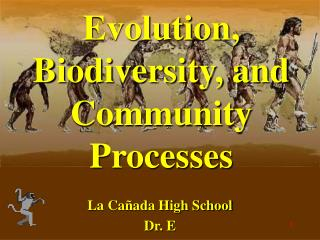 Evolution, Biodiversity, and Community Processes
