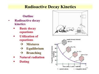 Radioactive Decay Kinetics