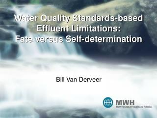 Water Quality Standards-based Effluent Limitations: Fate versus Self-determination