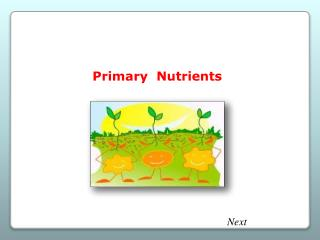 Primary  Nutrients