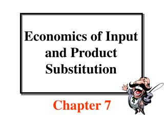 Economics of Input and Product Substitution