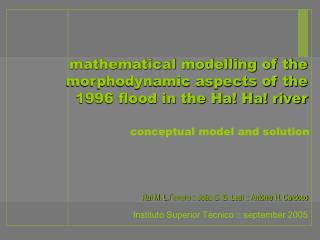 mathematical modelling of the morphodynamic aspects of the  1996 flood in the Ha! Ha! river