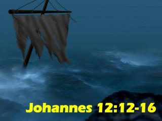 Johannes 12:12-16