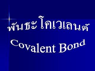 พันธะ โคเวเลนต์ Covalent Bond