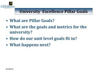 What are Pillar Goals What are the goals and metrics for the university How do our unit level goals fit in What happens