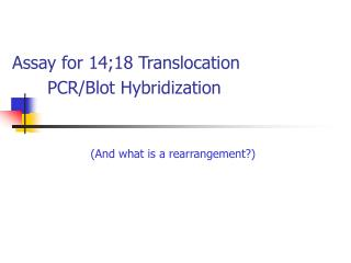 Assay for 14;18 Translocation  	PCR/Blot Hybridization