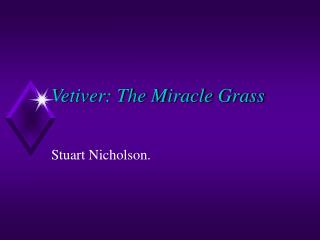 Vetiver: The Miracle Grass