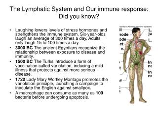 The Lymphatic System and Our immune response:  Did you know?