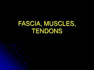 FASCIA, MUSCLES, TENDONS