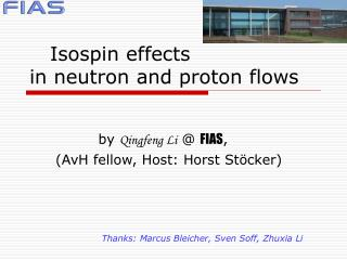 Isospin effects  in neutron and proton flows