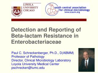 Detection and Reporting of Beta-lactam Resistance in Enterobacteriaceae