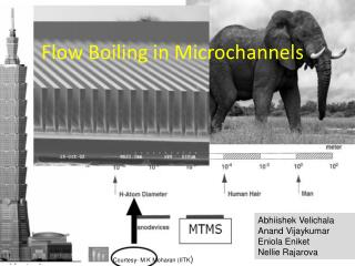 Flow Boiling in Microchannels