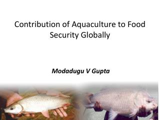 Contribution of Aquaculture to Food  Security Globally