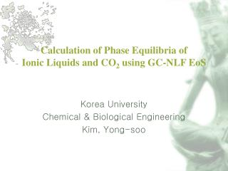 Calculation of Phase Equilibria of Ionic Liquids and CO 2  using GC-NLF EoS