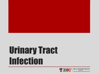 URINARY OBSTRUCTION   STASIS