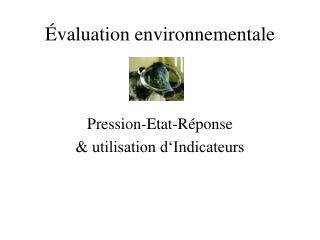Évaluation environnementale