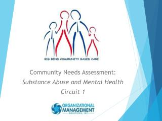 Community Needs Assessment: Substance Abuse and Mental Health Circuit 1
