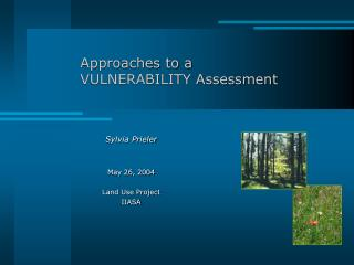 Approaches to a VULNERABILITY Assessment