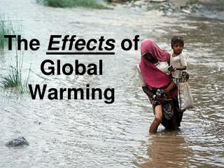 The  Effects of Global Warming