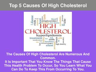 Major Causes of High Cholesterol