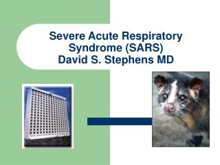 Severe Acute Respiratory Syndrome (SARS) David S. Stephens MD