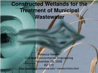 Constructed Wetlands for the Treatment of Municipal Wastewater