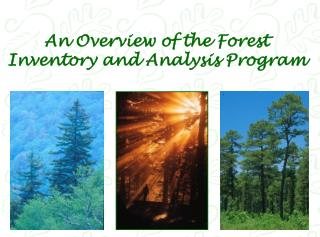 An Overview of the Forest Inventory and Analysis Program