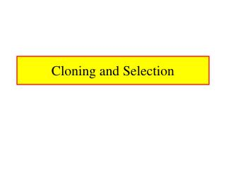 Cloning and Selection