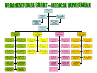 ORGANIZATIONAL CHART – MEDICAL DEPARTMENT