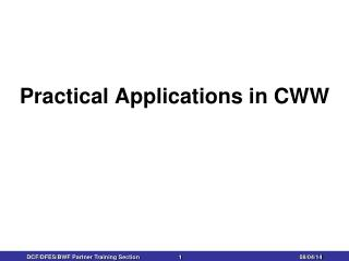 Practical Applications in CWW