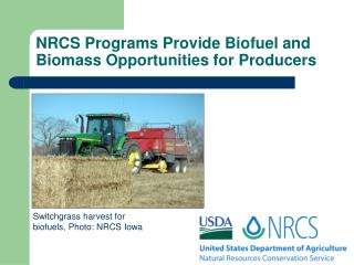 NRCS Programs Provide Biofuel and Biomass Opportunities for Producers