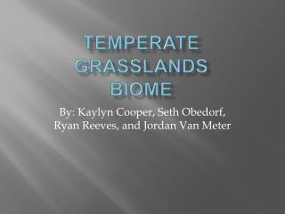 Temperate Grasslands Biome