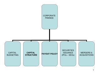 PART 1: CAPITAL STRUCTURE