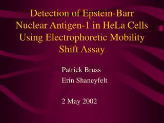 Patrick Bruss Erin Shaneyfelt 2 May 2002