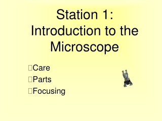 Station 1: Introduction to the Microscope