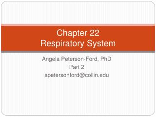 Chapter 22  Respiratory System