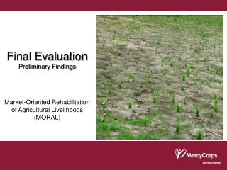 Final Evaluation Preliminary Findings