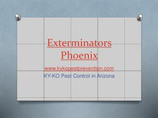 KY-KO Pest Control in Arizona