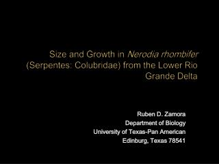 Ruben D. Zamora Department of Biology University of Texas-Pan American Edinburg, Texas 78541