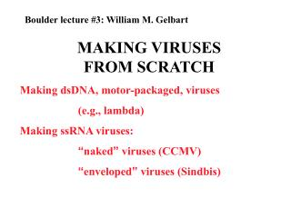 MAKING VIRUSES FROM SCRATCH