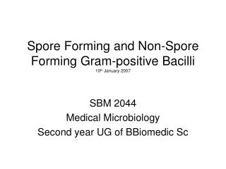 Spore Forming and Non-Spore Forming Gram-positive Bacilli 10 th  January 2007