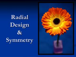 Radial  Design & Symmetry
