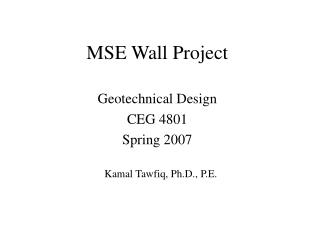 MSE Wall Project
