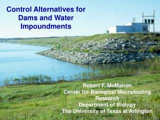 Control Alternatives for Dams and Water Impoundments