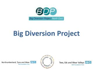 Big Diversion Project